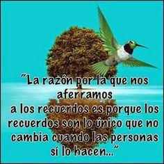 Frases Bonitas Para Facebook: Imagenes Con Frases Bonitas Para Refexionar