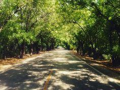 > Ahí vamos #VillaJaragua