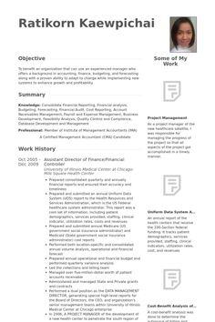 financial controller resume example ideas pinterest cv