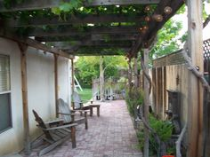 Side yard grape arbor. How lovely! Makes me want a glass of wine.