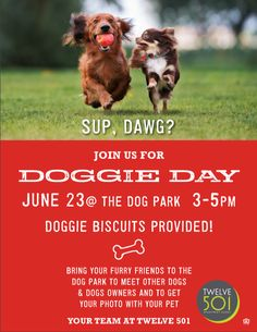 Doggie Day at the dog park! Your furry friends deserve to have fun, too! Dog Park, Dog Owners, Your Photos, Your Pet, Have Fun, How To Get, Tours, Pets, Friends