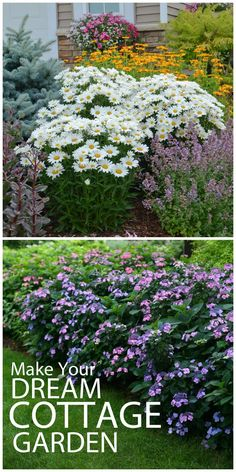 Cottage gardens start with large clusters of classic, flowering plants. Daisies are essential! The purples are Tuff Stuff Mountain Hydrangea. Win $250 in flowers to make your garden pop with the Proven Winners Dream Garden Sweepstakes #ad