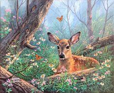 Celebrate Each New Day Deer Pictures, Deer Art, Wildlife Art, Love Art, New Day, Kangaroo, Giraffe, Drawings, Nature