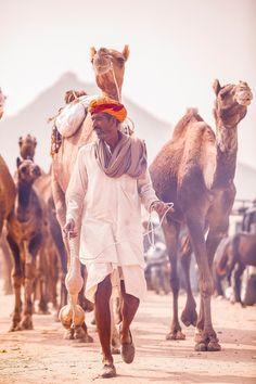 Pushkar Camel Fair,