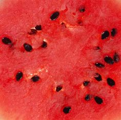 Seeds saved from the fruits of your garden's non-hybrid watermelon plants (Citrullus lanatus) can grow into new plants the following season. Different varieties of watermelons can ...