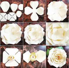 DIY Giant Rose Templates, Paper Rose Patterns & Tutorials, Paper Rose Flower Wall, SVG Cut files for Paper Flowers Discover thousands of images about Full rose paper flower template sets. Fun and easy to make! Step by step Regina rose tutorial. Giant Paper Flowers, Diy Flowers, Fabric Flowers, Paper Flower Wall, Paper Flowers How To Make, Paper Wall Flowers Diy, Diy Cardstock Flowers, Diy Paper Flower Backdrop, Paper Wall Decor