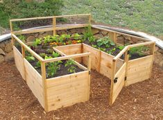 Garden in pots and raised beds.countryliving