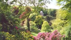 The Temple of Apollo at Stourhead is framed in beautiful spring flowers this season © Sally Waygood