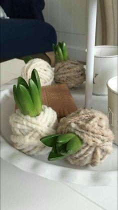 Hyacint...how cool!