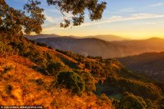 Golden Sunrise in Barrington Tops, Gologolies Lookout, Barrington Tops, NSW, Australia Cgi, Barrington Tops, Sun Painting, Design Projects, Bespoke, Places To Go, Trips, Sunrise, National Parks