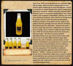 Bodrum Yadigarı Cleaning Supplies, Mandala, Bottle, Cleaning Agent, Flask, Mandalas, Jars
