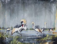Nicole Sanderson. Crowned Crane. Oil on Canvas. 100cm x 85cm framed $1400   A3 (420 X 297 mm) -$80  A2 (594 x 420 mm)- $110  A1 (841 x 594 mm) - $150  A0 (1189 x 841 mm) -$250  *shipping = + $30 worldwide