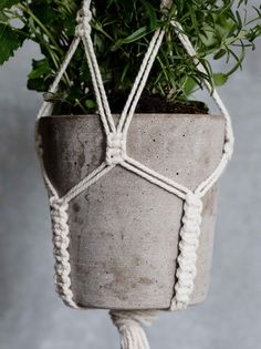 macrame plant hanger+macrame+macrame wall hanging+macrame patterns+macrame projects+macrame diy+macrame knots+macrame plant hanger diy+TWOME I Macrame & Natural Dyer Maker & Educator+MangoAndMore macrame studio Macrame Plant Holder, Macrame Plant Hangers, Plant Holders, Diy Arts And Crafts, Creative Crafts, Mini Vasos, Chevron Friendship Bracelets, Macrame Knots, Micro Macrame