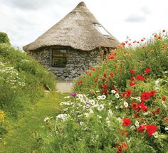 Spreading upon the green-hued fields of Rochall, County Galway, Ireland, is Brigit's Garden, a celebration of Celtic folklore, mythology and heritage. Because of the climate-moderating effects of the nearby Gulf Stream, a surprising array of colorful flowers, herbs and vegetables thrives in this garden, which reflects the four seasons and the cycle of life.