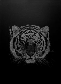 Tiger Atelier Kouglof  Sérigraphie Art Graphique, Tiger, Mixed Media, French, Artwork, Animals, Charts, Atelier, Work Of Art