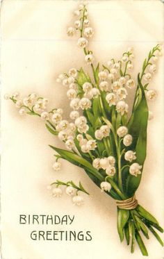 BIRTHDAY GREETINGS bunch of white lilies-of-the-valley Birthday Postcards, Birthday Greeting Cards, Birthday Greetings, Vintage Greeting Cards, Vintage Postcards, Lily Of The Valley Flowers, Australian Native Flowers, Vintage Borders, Floral Artwork