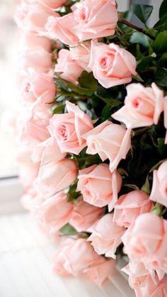 Roses..