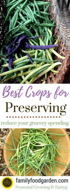 Many people are going back to preservingbecause of the rising cost of groceries. Although you do need to invest into certain equipment if you're preserving with canning, or a dehydrator for dehydrating, many crops can be just frozen (even without blanching!). Food that are in-season during the sum