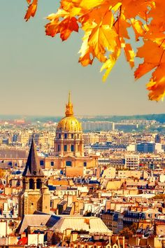 Autumn in Paris iPhone Wallpaper HD Paris Wallpaper, Fall Wallpaper, Paris In Autumn, Autumn Fall, Taj Mahal, Building, Nature, Photography, Travel