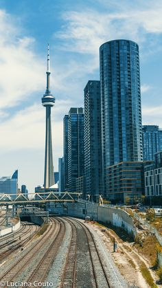 Toronto Skyline, Toronto City, Downtown Toronto, Torre Cn, Places To Travel, Places To Go, Toronto Ontario Canada, Canada Eh, Newfoundland And Labrador