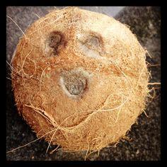 Coco Nut!