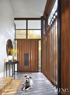 Modern Slatted Wood Entry with Dog