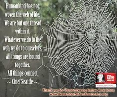 """Humankind has not woven the web of life.  We are but one thread within it.  Whatever we do to the web, we do to ourselves.  All things are bound together.  All things connect."" - Chief Seattle    #native #quote"