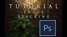 Focus Stacking : Guida Pratica + alcuni consigli finali