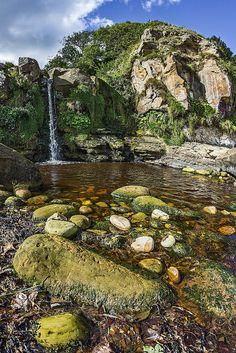 Hayburn Wyke, Cloughton Newlands, North Yorkshire, England