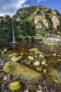 Hayburn Wyke, Cloughton Newlands, North Yorkshire, England