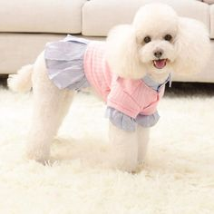 Dog clothes in Yellow or Pink and 4 sizes – TheCatandPooch Fall Winter, Autumn, Yellow, Dogs, Clothing, Pink, Clothes, Rose, Fall