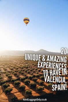 In Valencia, you can have experiences unlike any you've ever had! Here are some unique ones! devourspain.com