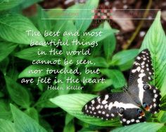 quotes and photography