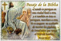 Vidas Santas: Santo Evangelio según san Mateo 10:23