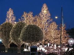 Christmas lights at the Opryland Hotel-the kiddos would love these!