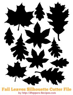 Silhouettes feuilles