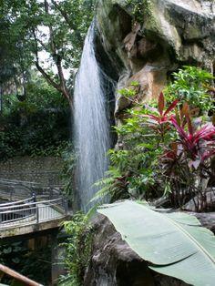Kuala Lumpur Malaysia - Lake Gardens - Bird Park - Tips für einen unvergesslichen Urlaub