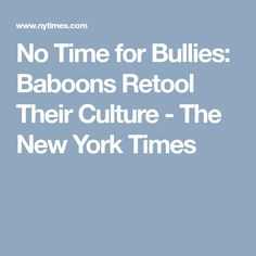 No Time for Bullies: Baboons Retool Their Culture - The New York Times