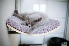 """Cat+shelf+""""CHILL""""+de+cosy+&+dozy+sur+DaWanda.com"""