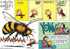 Calvin and Hobbes - Call the national guard. I'm sure they can track the bee on radar.