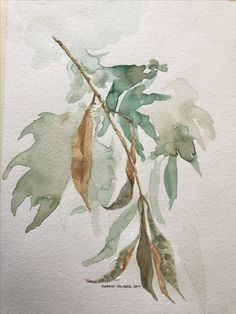 Leaf study 2017 www.whipit.com.au