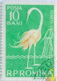 Romania stamp Stamp Collecting, Postage Stamps, Flamingo, Europe, Graphic Design, Bird, Animal, Drawings, Collection