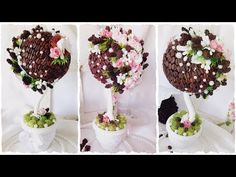 Coffee topiary tree handmade with flowers & cones - master-class from Alena Tikhonova Topiary Trees, Christmas Deco, Ikebana, Handmade Crafts, Plant Hanger, Fruit, Coffee, Desserts, Youtube
