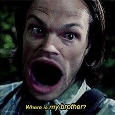 What have I stumbled upon at 4 in the morning Winchester Brothers, Sam Winchester, Spn Memes, Wtf Moments, Supernatural Funny, Super Natural, Destiel, Funny Stories, Superwholock