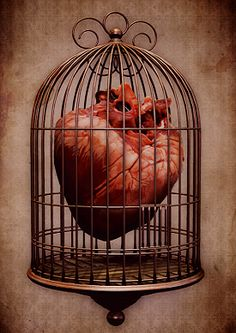 heart in cage Cage Tattoos, Tatoos, Heart Art, My Heart, Heart Broken, Anatomical Heart, Heart Images, Human Heart, Anatomy Art