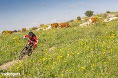 Wideopenmag MTB in Israel (5 of 12)