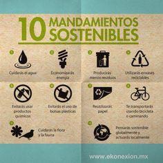 Ayudemos al medio ambiente con estos 10 mandamientos sostenibles.