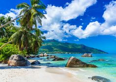 Visit these 12 best beaches in Seychelles like Beau Vallon, & Anse Major on your next trip to this unblemished island for an enthralling holiday experience. Seychelles Honeymoon, Les Seychelles, Seychelles Islands, Seychelles Beach, Fiji Islands, Cook Islands, Places To Travel, Places To Go, Nature Architecture