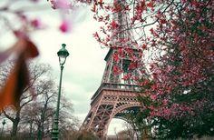 Eiffel, Paris, France