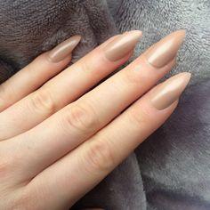 Doobys Stiletto Nails NEW! Mocha Gloss Gel Look 24 Claw Point False... ($21) ❤ liked on Polyvore
